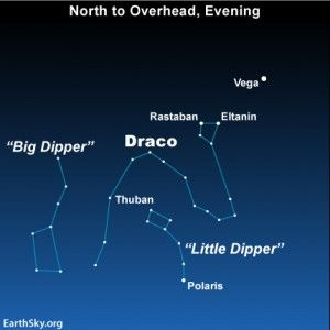 Big Dipper points to Polaris, helps find Thuban | EarthSky.org | Star  constellations, Constellations, Draco
