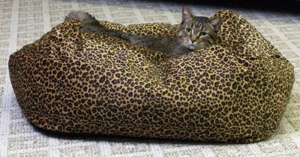 Kh Cuddle Cube Kitty Cat Bed Small 18inch Round Leopard You Can Get Additional Details At The Image Link Cat Bed Leopard Dog Bed Heated Cat Bed