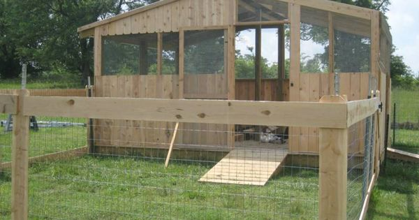 duck coop | Duck breeds are segregated into their own housing and