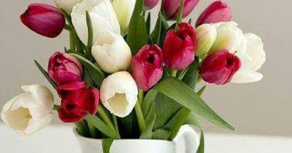 صور ورد 2021 خلفيات وصور ورود رائعة Tulips Arrangement Tulips In Vase Amazing Flowers