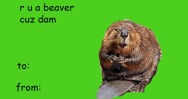 35 Rude and Funny Valentines Day Cards Page 4 of 35 BuzzLamp – Rude Valentines Day Cards
