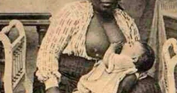 American Slavery 1619-1877 Paperback Peter Kolchin American History