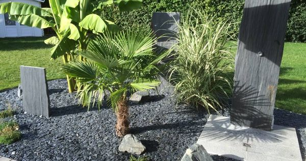 Photos de jardin de style de style tropical massif de for Massif contemporain jardin