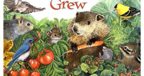 How Groundhog 39 S Garden Grew By Lynne Cherry Squirrel Teaches Little Groundhog How To Plant And