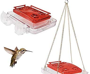 Amazon Com Sherwoodbase Cuboid Hummingbird Feeder 2 In 1 Attached To Window Or Hung On Tree Built In Ant Moat Bee Gua Humming Bird Feeders Cuboid Feeder