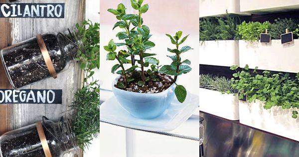 Herb Gardens 30 great Herb Garden Ideas GardenIdeas Gardening