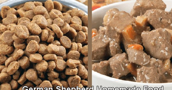 Best Food For German Shepherd Dogs Dog Food Recipes