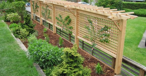 Grape Vine Arbor This Would Be Neat As A Behind A Bench Fence Combo Too For Shade And Privacy Garden Pinterest Grape Vines Arbors And Bench