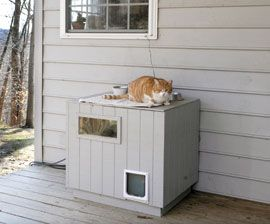 Fancy Digs For Ferals The Humane Society Of The United States Feral Cat Shelter Feral Cats Feral Cat House