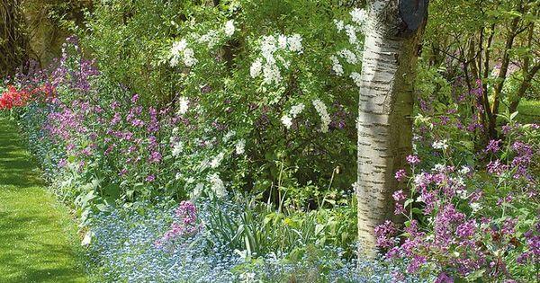 Massif Fleuri L 39 Ombre Des Arbres Jardins Bordure De Jardin Et Planters