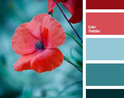 Color Palette 979 The red of poppies looks very contrasting on a