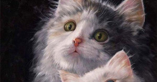 Gary Jenkins Cat S
