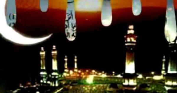 رمضان كريم فيديو للواتس اب