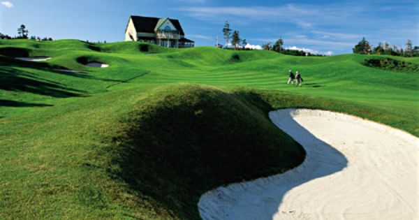 17++ Brudenell river golf course ideas in 2021