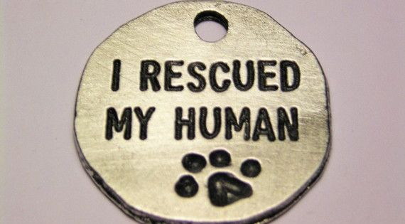 Dog tags for my furbabies.... must have!