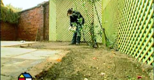 C mo renovar un patio viejo y sombr o youtube huerto - Jardineria colmenar viejo ...