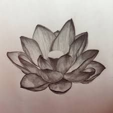 Afbeeldingsresultaat Voor Realistic Lotus Flower Drawings Realistic Lotus Tattoo Lotus Flower Drawing Lotus Drawing