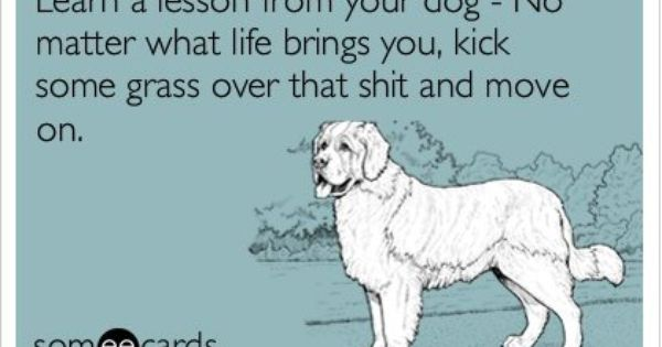 Learn a lesson from your dog, mitt lost and we will have