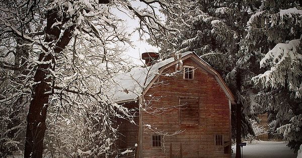 Winter Barn - Love the play of light and dark - the