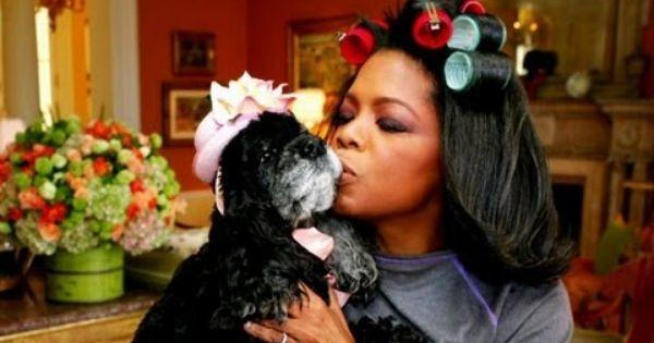What Oprah Learned From Her Dog Sophie Oprah S Lifeclass Puppy Mills Oprah Oprah Winfrey