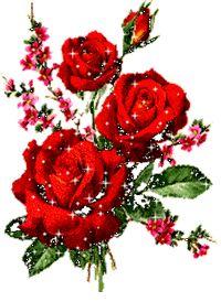 شركة مكافحة حشرات بالمدينة المنورة Beautiful Flowers Images Flower Images Beautiful Flowers
