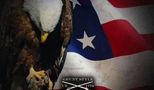 Eagle with bowed head   Facebook likes   Pinterest   Eagle ...