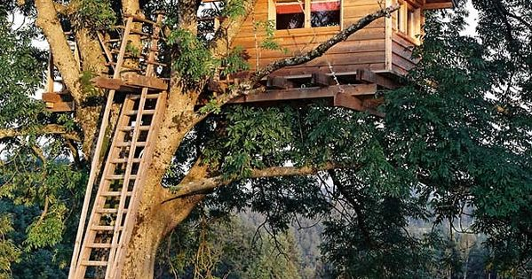 baumraum baumhaus tegernsee treehouse dreaming pinterest inspiration. Black Bedroom Furniture Sets. Home Design Ideas