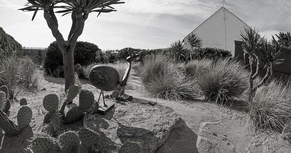 Jardin graphique de bord de mer cr ation sarl pain concept for Jardin graphique