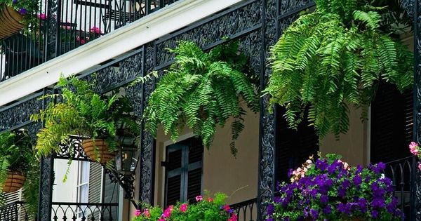 new orleans weather memorial day