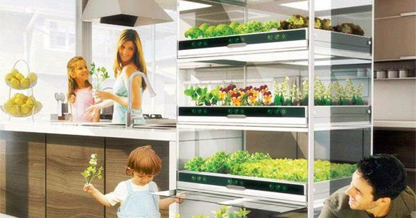 My dream home has one of these in it. Definitely. Nano Garden
