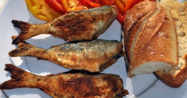 Easy pan fried snapper bluefish recipe served with for Blue fish recipes