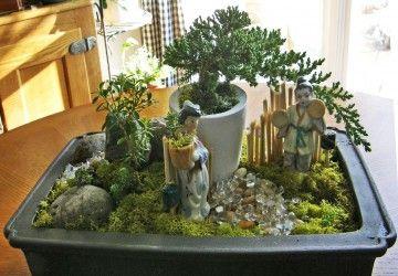 How To Care For A Sick Or Dying Juniper Bonsai Tree Bonsai Tree Gardener Bonsai Tree Dish Garden Garden Bonsai Tree