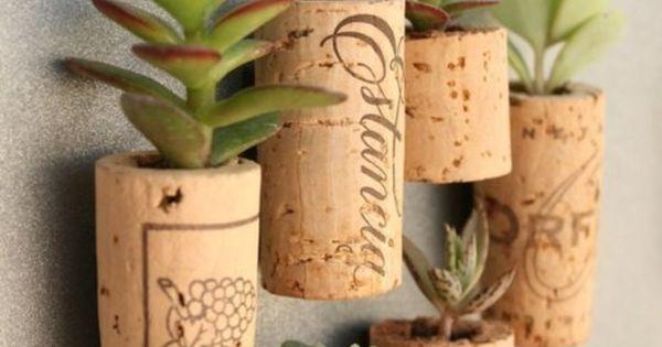 cork succulents @Jenny Dieters cute idea for those air plants.