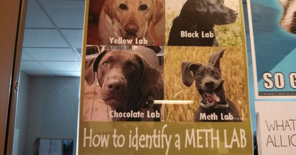 How to identify a meth lab joke naked photo