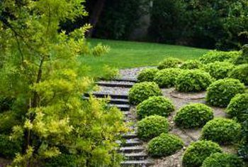 Pin By Shirakiservices On Great Landscaping And Other Ideas Sloped Garden Landscaping On A Hill Steep Hillside Landscaping
