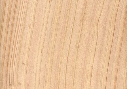 Atlantic white cedar wood identification pinterest