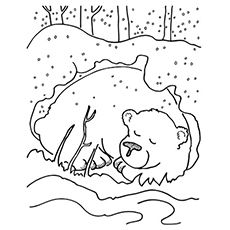 Top 25 Free Printable Winter Coloring Pages Online Bear Coloring Pages Animals That Hibernate Coloring Pages