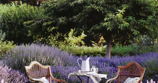 Perfect place for a relaxing tea time! Surrounded by flowers and serenity!