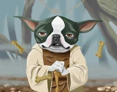 The Ultimate Boston Terrier Star Wars Dog Art Print by rubenacker