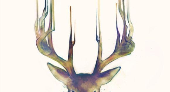 Deer Illustration – Amy Hamilton http://amyhamilton.ca/