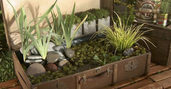 Utilisima v deos estanque en maleta luz en casa for Baldosas para jardin baratas