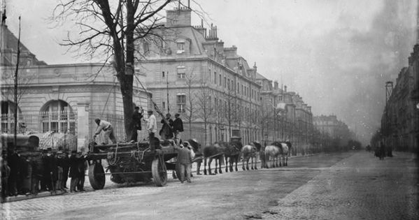 Transport d 39 arbre sur le bd st michel 1877 le boulevard for Carrelage du sud boulevard saint germain
