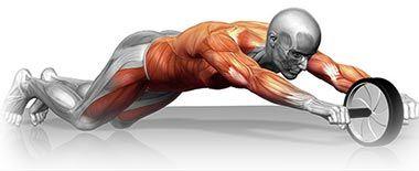 Adoptez La Roulette Abdo : Avis/Conseils | Musculation abdos ...