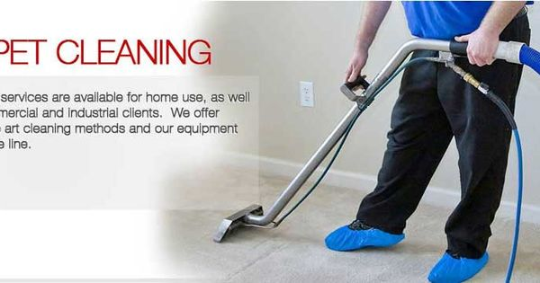 Dinnos Brisbane Carpet Cleaning And Pest Control Is A Family Oriented Business That Understands How To Clean Carpet Dry Carpet Cleaning Cleaning Carpet Stains