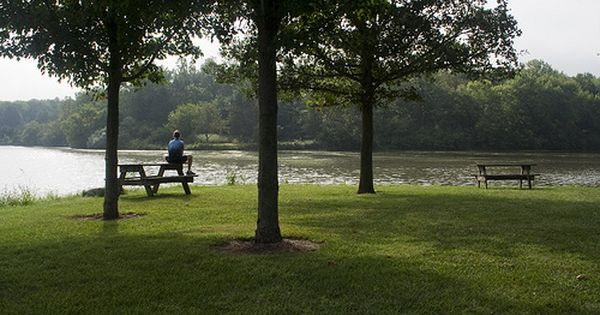 Kickapoo State Park Is A 2 842 Acre Recreation Area In East Central Illinois That Runs Along The Vermilio State Parks Camping In Illinois Camping San Sebastian