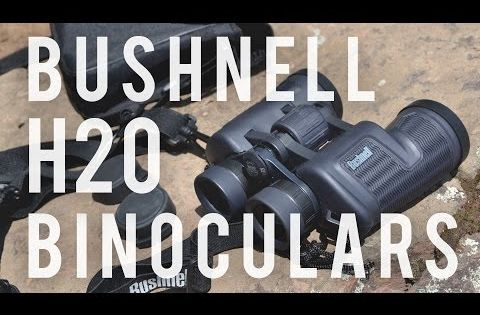 Bushnell H2o Waterproof Fogproof Roof Prism Binocular 8 X 42 Mm Black Bushnell Binoculars Jewelry Fashion Trends