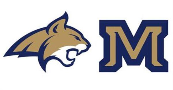 Montana State Debuts New Logo For Sports Teams Montana State Montana State University Montana State Bobcats Football