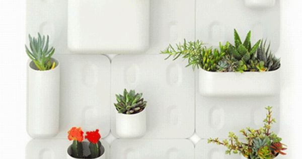 Indoor Vertical Garden Kit : Indoor Vertical Garden Kit : an indoor vertical garden kit, the vases ...