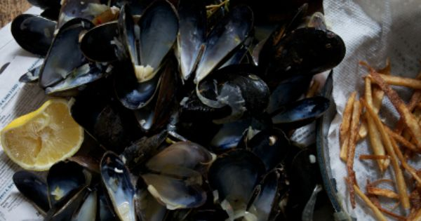 Mussels with beer, yummy recipe