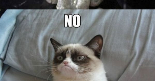 I want to play a game. No. Okay :(. grumpycat saw iwanttoplayagame